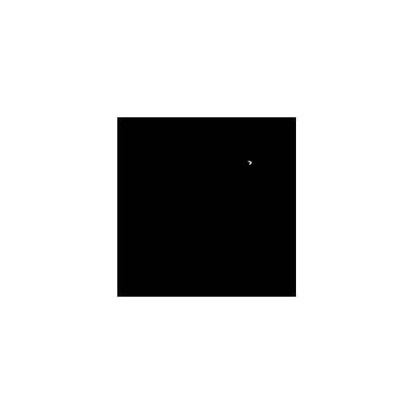 Pitbull bianco/nero - Adesivo Prespaziato - Colore Nero - 10cm